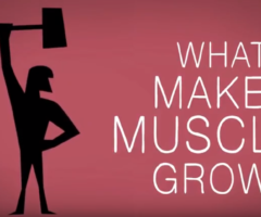 Gym motivation animation with whey protein and workout
